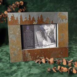4x6 Picture Frame: Moose in Pine Trees